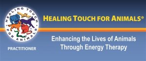 Healing Touch for Animals HTA Practitioner